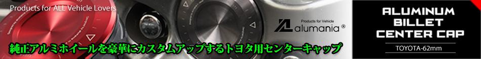 TY01A-FLT1リンク